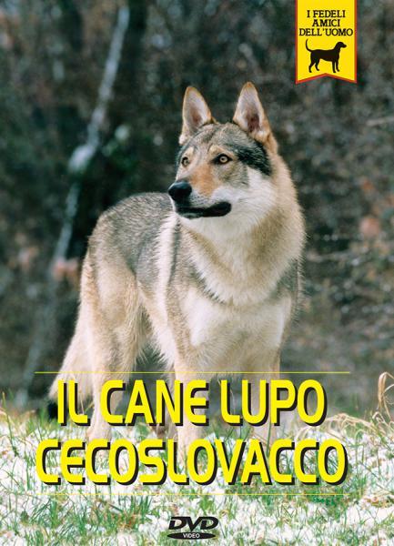 Cane Lupo Cecoslovacco Documentario Video Dvd Passione Animali