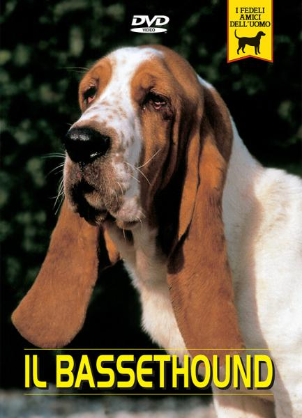 Basset hound documentario video dvd passione animali
