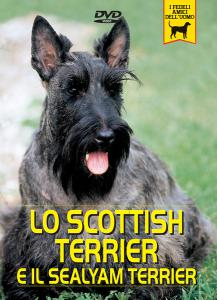 SCOTTISH TERRIER e SEALYHAM TERRIER