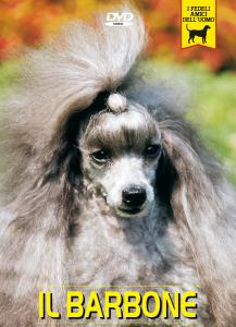 Cani piccola taglia video cani documentario cani for Nomi per cani taglia piccola